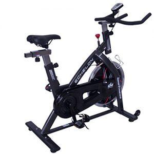 ION Fitness ECHELON GS FI310 indoor bike heimtrainer
