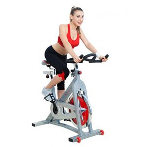 Sunny Health & Fitness Indoor Cycling Bike SF-B901