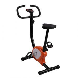OUTAD Fitness Fahrrad Heimtrainer, Indoor Einstellbare Aufrechte Übung Bike, Einfach zu Montieren und Zu Zerlegen, LCD Display, Orange und Weiß