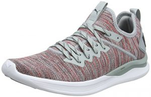Puma Herren Ignite Flash Evoknit Cross-Trainer