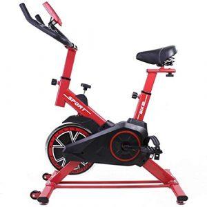 Dragon One Indoor Cycle Fahrrad mit 15 kg Schwungrad