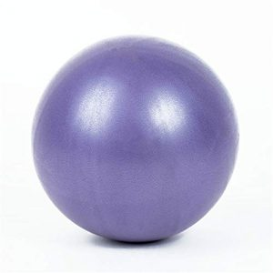 W.S.-YUE Multifunktionale Fitnessgeräte Mini-Gymnastikball – 9-Zoll-Bällchen für Stabilität, Barre, Pilates, Yoga, Grundlagentraining und Physiotherapie – Mini-Gymnastikball (Farbe : Lila)